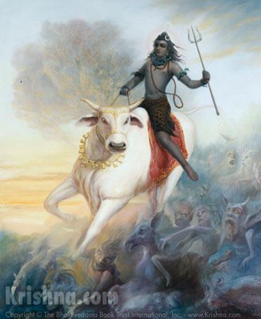 A grande noite de Shiva 10