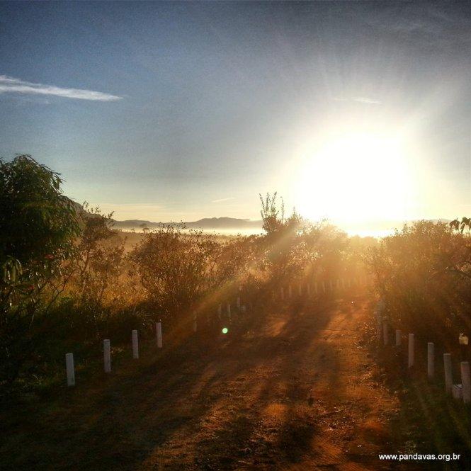 06 I (entrevista - templos) Paraíso dos Pândavas - (12)