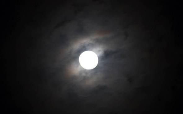 -@ 04 SI (artigo - Caitanya e Associados) O Nascimento do Senhor Chaitanya (GPurnima dia 5, com contagem regressiva) (3251) (bg) (ta)