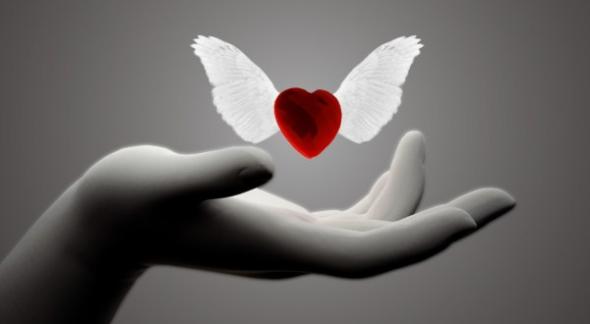 dia23 (artigo - Evolução Espiritual) I Amor Absoluto (ta)