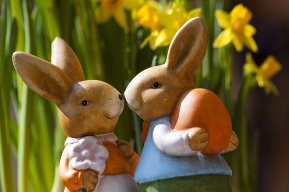 casal coelho