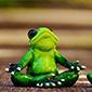 yoga-asana-chamada